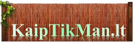 kaiptikman-biniko-logo